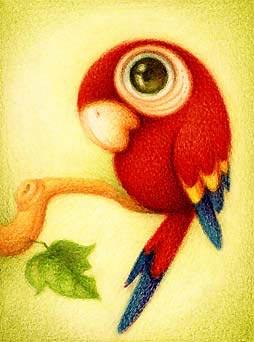 Desenho de um louro ou papagaio (Título: Guara roja, Autor: Faboarts)