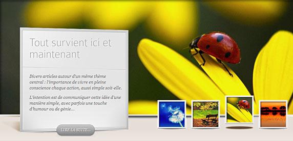Image du site 'Sereinement' (http://fr.serena-mente.com/)