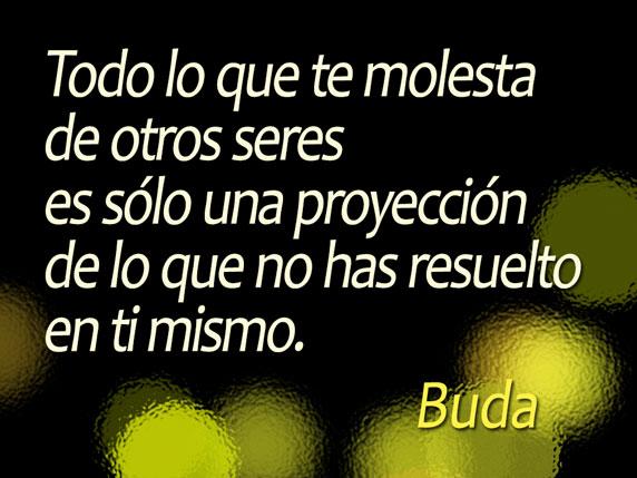 Todo lo que te molesta de otros seres es sólo una proyección de lo que no has resuelto en ti mismo (Buda)