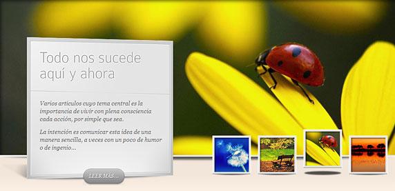 Imagen del sitio web serenamente.amarseaunomismo.com